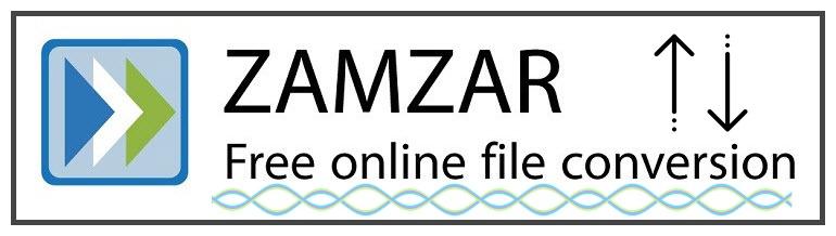 free online pdf to word converter zamzar