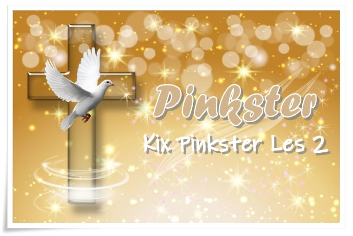 kix pinkster les 2 - groot